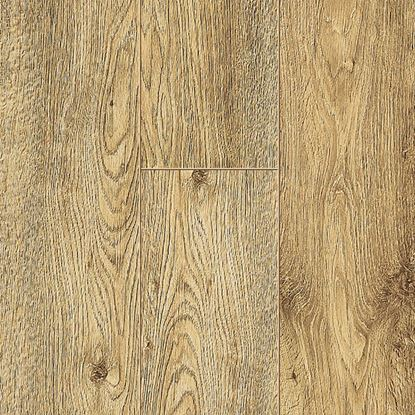 Picture of FORTISSIMO  ETNA OAK 60139