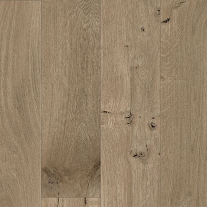 Picture of GRANDE NARROW SEASHELL OAK 64083