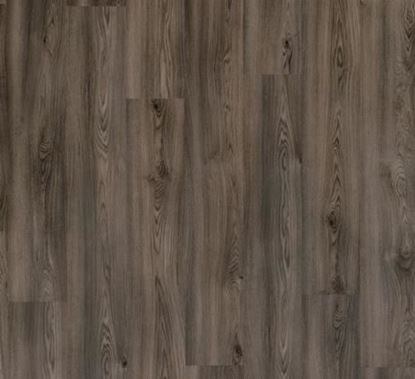 Picture of PURE CLICK 55 COLUMBIAN OAK 996E CLEARANCE = 6 PACKS 12.984 SQM NO RETURNS